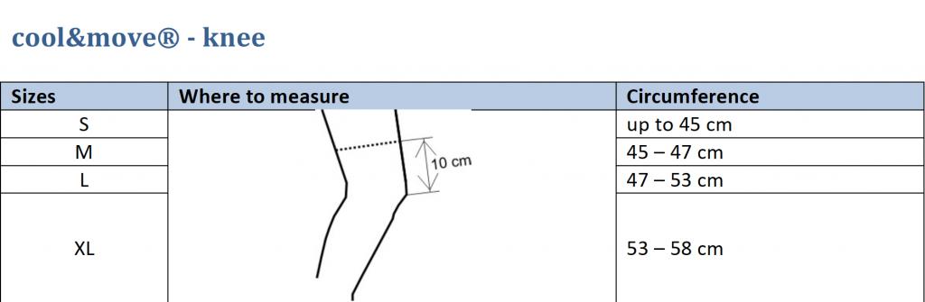 knee sizes